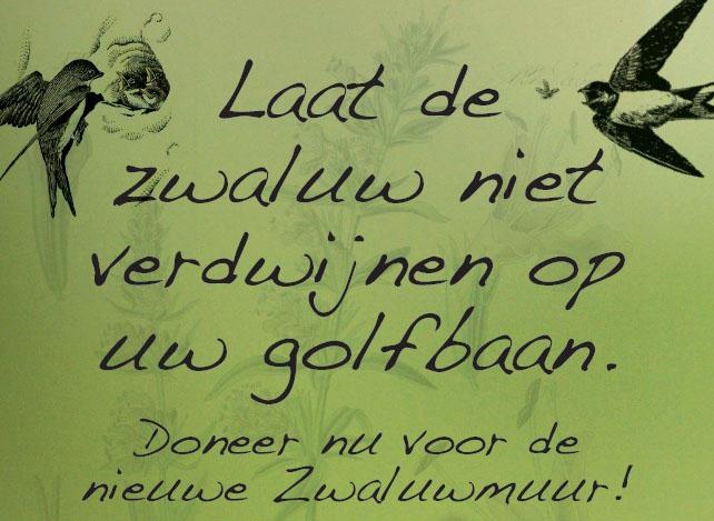 Poster Zwaluw uitgelicht