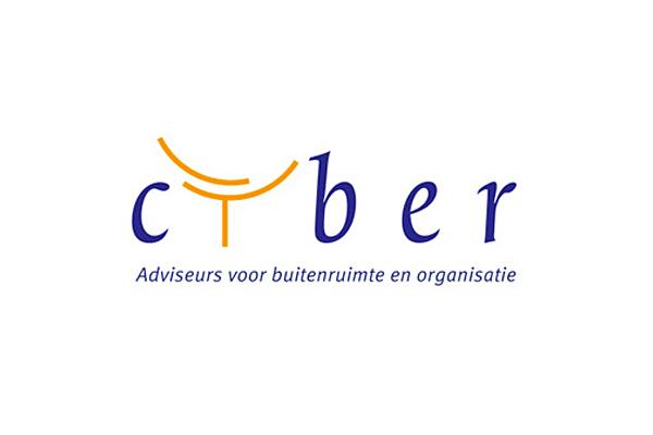 Cyber Adviseurs